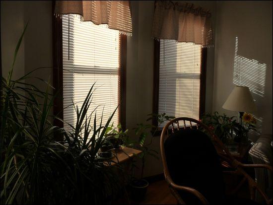 Home-blindsshut
