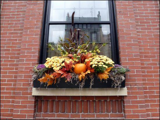 Fall-windowbox