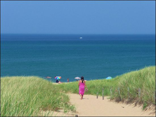 August2009-RacePoint