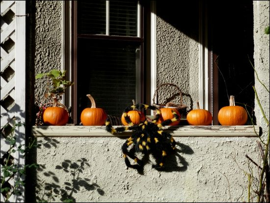 PorchPumpkin-with-spider