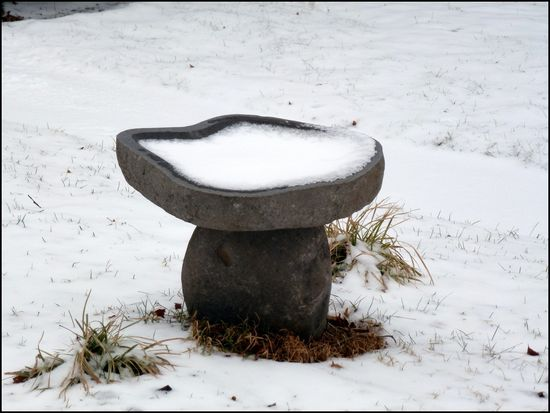 Bowl-of-Snow