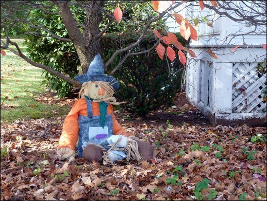 SweetScarecrow