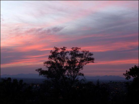 SMA-sunset1