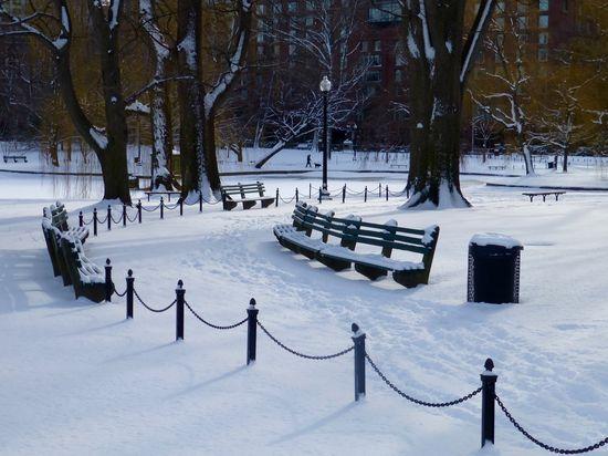 Public-garden-january-18_23835548383_o